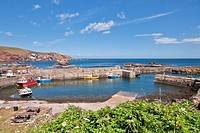 St Abbs Harbour Scottish Borders Scotland
