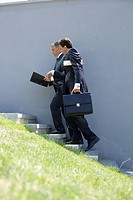 Two businessman going up a stairway (thumbnail)