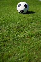 Ball lying on grass