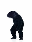 Full length of an happy ape with hands gestured isolated on white background