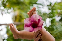 A baby´s legs and flower, close_up, the Maldives.