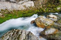 view of a mountain river in ordesa national park, Pyrenees, Spain