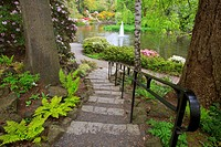 Portland, Oregon, United States Of America, A Path Leading Down To The Water In Crystal Springs Rhododendron Gardens