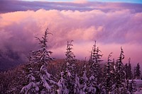 Oregon, United States Of America, Sunrise On Mount Hood At The First Snow In The Oregon Cascades