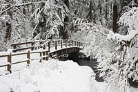 Oregon, United States Of America, Snow Covered Bridge In Silver Falls State Park