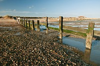 Breakwaters on shingle beach habitat, Swale National Nature Reserve, North Kent Marshes, Isle of Sheppey, Kent, England, november