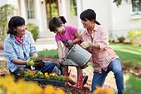 Family watering garden