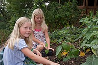 Girls gardening in vegetable garden
