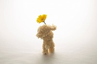 Toy dog holding yellow gerbera daisy, white background, copy space