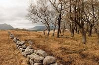 Sheeffry Hills, County Mayo, Ireland