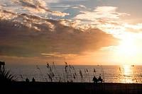 Sea at sunset, Venice Beach, Venice, Gulf Of Mexico, Sarasota County, Florida, USA