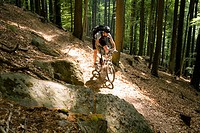 Mountain biker passing forest trail, Palatine Forest, Rhineland_Palentine, Germany