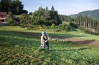 Female farmer working on pasture, St Thomas am Blasenstein, Muehlviertel, Upper Austria, Austria