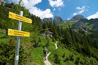 Hiking trail to Tannheim hut, Tannheim Mountains, Tyrol, Austria, Europe