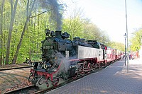 Hostorical steam train Molli, Heiligendamm, Germany