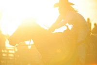 A silhouette of a rodeo rider competing in a barrel racing event under backlit sunny arena conditions.