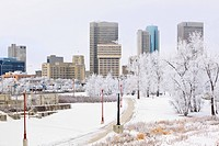 Winnipeg skyline on a scenic winter day. Trees covered in snow and frost. Winnipeg, Manitoba, Canada.