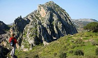 Grazalema Natural Park. Cadiz and Málaga provinces. Andalucia. Spain