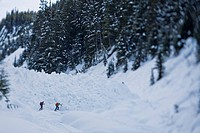 Two men backcountry skiing, Rogers Pass, Glacier National Park, British Columbia, Canada