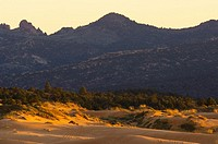 Sunset light at Coral Pink Sand Dunes State Park, near Kanab, Kane County, Southern Utah