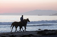 Horseback rider with horses on Rincon Beach Park.