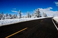Colorado Highway in Winter