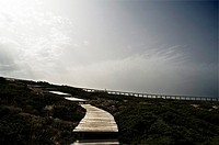 Paths to the beach. Alentejo, Portugal