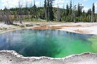 Hot Spring, West Thumb Geyser Basin, Yellowstone Lake, Yellowstone National Park, Wyoming, USA