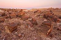 Sunset over Petrified forest national park