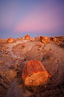 Sunset over the Petrified forest national park