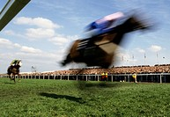 Two horses running on a racecourse