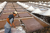Janubio salt pans, Lanzarote, Las Palmas, Canary Islands, Spain