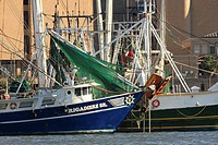Commercial Fishing Boats - Galveston, Texas