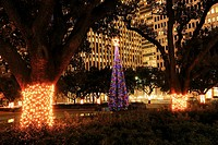 Downtown Christmas Tree at City Hall - Houston, Texas