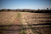 A hiking trail cuts through an open field on a Civil War battlefield.