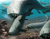 Dunkleosteus prehistoric fish, artwork. This extinct fish lived in the late Devonian period 380_360 million years ago. Dunkleosteus was a large predat...