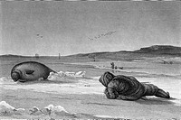 Seal hunting. 19th century artwork of an Inuit hunter with a spear watching and trying to kill a seal. Other Inuit hunters are in the background, on t...
