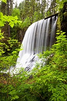 oregon, united states of america, north middle falls in silver falls state park