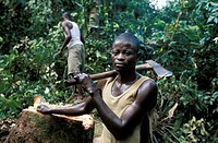 Congo woodcutter. Local woodcutter with an axe by a tree stump in a tropical rain forest in the Congo Basin. Demand for timber has risen as the popula...