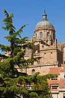 old cathedral and dome seen from plaza concilio de trento, salamanca, salamanca province, spain