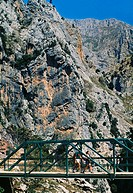 Walkers along the route of the Cares Canyon, in the Picos de Europa. National Park. Between the Urrieles and Andara massifs. Leon. Castilla-Leon. Spai...