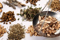 Chinese Herbal Medicine, Prescription