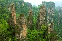 Mt Tianzi, Shentang Gulf, Zhangjiajie, Hunan Province, China, Asia