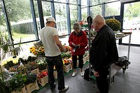 Elderly woman buying flowers, Netherlands