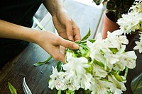 Arranging fresh flowers