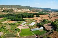 Landscape. Brihuega, Guadalajara province, Castilla La Mancha, Spain.