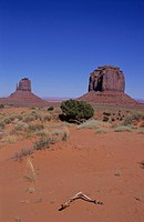 U.S.A. Arizona. Monument Valley                                                                                                                       ...