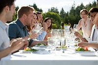 People enjoying outdoor dinner party (thumbnail)