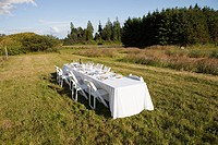 Dinner table in a rural field