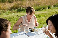 People at dinner party in a field